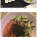 Simple Food Diary iPhone App Review