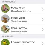 ChirpOMatic USA Bird Song Recognition iPhone App Review