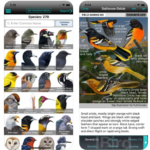 iBird Yard+ Guide to Birds iPhone App Review
